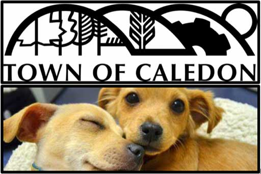Caledon Animal Services